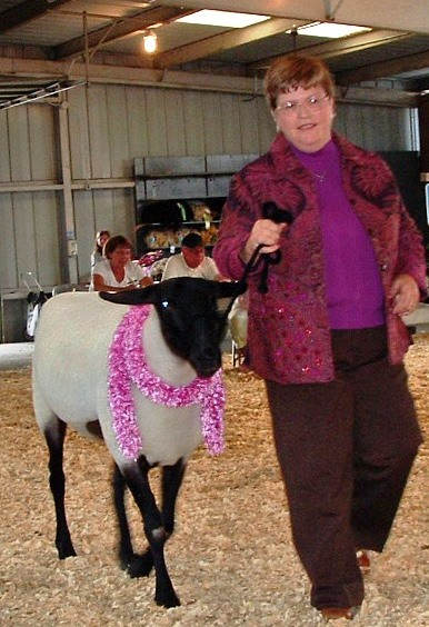 Judy and yearling ewe